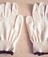 Găng tay KJ Glove-C40